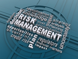 Enterey DEI Risk Management 5